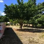 House for sale in Xcanatun Merida YucatanIMG_9457