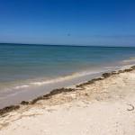 Sisal Yucatan beach house for sale IMG_0704-(1)