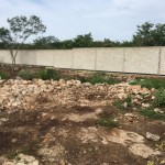 Lot for sale in Yucatan IMG-3769
