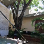 Colonial Mansion Merida Yucatan for sale IMG_1837 (1)
