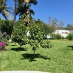 Large home Chuburna Merida for sale IMG_2462
