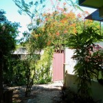 House for sale Izamal YucatanIMG_20200526_1020481_rewind_kindlephoto-150947926