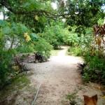 House for sale Izamal YucatanIMG_20200718_1154014_rewind_kindlephoto-150516887
