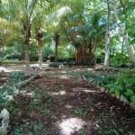 House for sale Izamal YucatanIMG_20200718_1158364_rewind_kindlephoto-150193797