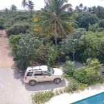 Sisal for sale IMG_20210209_114824x