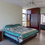 Sisal for sale IMG_20210209_121723x