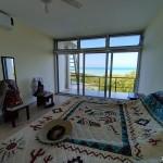 Sisal for sale IMG_20210209_121817x