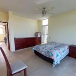 Sisal for sale IMG_20210209_121856x