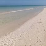 Sisal Getaway Beachhouse for Sale in Mexico IMG_20210506_112508